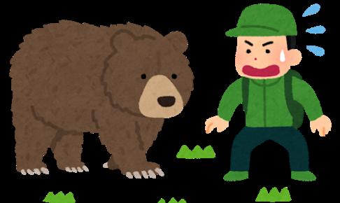 ウルトラライトハイキング ブログ