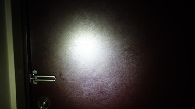 RovyVon Aurora A5x を Goal Zero LIGHTHOUSE の代わりに購入